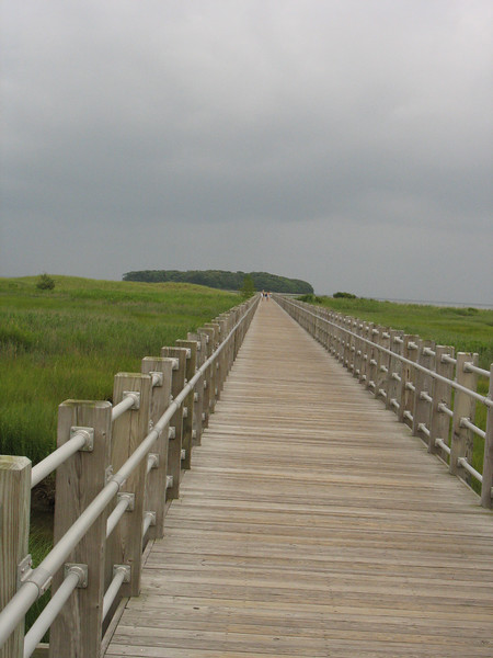 """Project restored tidal wetlands at fletchers creek in the Fletchers Creek Wetland Restoration, Millford, Connecticut. [Silver Sands State Park] Minor drainage improvements which involved the retrofitting of culverts and tide gates to allow for additional tidal flow to enter the salt marshes within Fletchers Creek to help restore the marshes which had been degraded from the construction of a now abandoned service road and a trolley line."" p.54, FHWA Guidance on Transportation Enhancements"