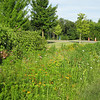 "Biorention swales along Cedar Park Road line the walking trail. In addition to receiving runoff from 18 acres of stadium/commuter parking area and Cedar Park Road itself, the swales provide a visual amenity to users of the walking trail. The wild flowers and native grasses flourishing in the swales echo with the songs of crickets, which in turn attract finches and other songbirds.<br /> <br /> The Navy-Marine Corps Memorial Stadium mitigation project of 2002 embodies the holistic approach and visionary potential of Transportation Enhancements to build infrastructure that is integrated with the environment, promotes health, and provides visual amenities. The project combines a 1.25 mile multi-use trail with a series of stormwater best management practices (BMPs) as landscaping. The stadium area serves both as an athletic facility and a park-and-ride location. Now, thanks to a $590,665 TE grant and an even more substantial local match, the stadium parcel is also used on a daily basis by many walkers and cyclists. The project demonstrates an ""ecosystem approach"" to infrastructure, where one element of the system is seamlessly interconnected with others, and performs multiple functions: preventing flooding, protecting water quality, fighting obesity, providing habitat, and serving the needs of outdoor recreation users.  Such infrastructure is characterized both by its efficiency and its livability.<br /> <br /> Federal Award: $590,665; Local Match: $623,931; Total Cost: $1,214,596"