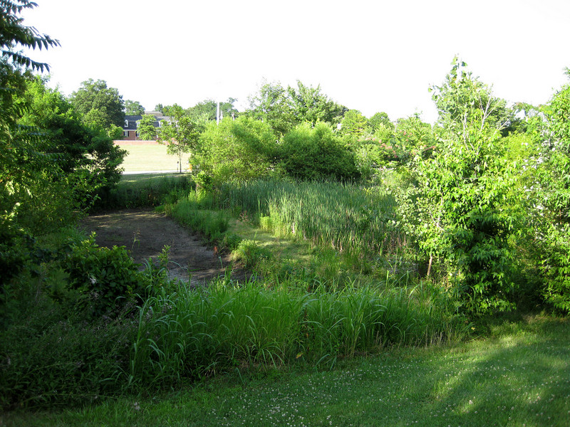"The bioretention pond is usually dry in between rain events. The dry bed is carefully screened from recreational users by generous landscaping. The pond, which uses a sand filter system, receives drainage from 6 acres of stadium parking. Prior to the installation of this system, untreated runoff containing excess nutrients, sediment, and trace metals would rapidly flood nearby Weems Creek, and ultimately the Chesapeake Bay during storms.<br /> <br /> The Navy-Marine Corps Memorial Stadium mitigation project of 2002 embodies the holistic approach and visionary potential of Transportation Enhancements to build infrastructure that is integrated with the environment, promotes health, and provides visual amenities. The project combines a 1.25 mile multi-use trail with a series of stormwater best management practices (BMPs) as landscaping. The stadium area serves both as an athletic facility and a park-and-ride location. Now, thanks to a $590,665 TE grant and an even more substantial local match, the stadium parcel is also used on a daily basis by many walkers and cyclists. The project demonstrates an ""ecosystem approach"" to infrastructure, where one element of the system is seamlessly interconnected with others, and performs multiple functions: preventing flooding, protecting water quality, fighting obesity, providing habitat, and serving the needs of outdoor recreation users.  Such infrastructure is characterized both by its efficiency and its livability.<br /> <br /> Federal Award: $590,665; Local Match: $623,931; Total Cost: $1,214,596"