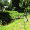 "Montgomery County's innovative stream reconstruction practices include recycling fallen logs found on site during the stream reconstruction process to anchor stream banks.  The stream banks have also been graded to provide an expanded floodplain for the stream during storm events.  Replacing a steep cut with a gentle grade allows plants to take root and provide additional stabilization.<br /> <br /> The Montgomery County Department of Environmental Protection (DEP) received a $2 million TE grant in 2000 to construct channel restoration and habitat improvements in Rock Creek Park. In an effort to restore and protect the Rock Creek watershed, which ultimately drains to the Chesapeake Bay, this project added modern stormwater controls to 730 acres to the Turkey Branch Stream subwatershed (approx. 30% of the drainage area). The project including work along 12,000 feet of the Turkey Branch Stream, along 13,400 feet of the Sycamore Creek, and along Joseph's Branch Stream. The Rock Creek watershed drains approximately 60 square miles.<br /> <br /> You can learn more about the DEP's work in this watershed by visiting their website at: <a href=""http://www.montgomerycountymd.gov/deptmpl.asp?url=/content/dep/restoration/home.asp"">http://www.montgomerycountymd.gov/deptmpl.asp?url=/content/dep/restoration/home.asp</a>"