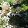 "An outfall on Turkey Branch, post-restoration.<br /> <br /> The Montgomery County Department of Environmental Protection (DEP) received a $2 million TE grant in 2000 to construct channel restoration and habitat improvements in Rock Creek Park. In an effort to restore and protect the Rock Creek watershed, which ultimately drains to the Chesapeake Bay, this project added modern stormwater controls to 730 acres to the Turkey Branch Stream subwatershed (approx. 30% of the drainage area). The project including work along 12,000 feet of the Turkey Branch Stream, along 13,400 feet of the Sycamore Creek, and along Joseph's Branch Stream. The Rock Creek watershed drains approximately 60 square miles.<br /> <br /> You can learn more about the DEP's work in this watershed by visiting their website at: <a href=""http://www.montgomerycountymd.gov/deptmpl.asp?url=/content/dep/restoration/home.asp"">http://www.montgomerycountymd.gov/deptmpl.asp?url=/content/dep/restoration/home.asp</a>"