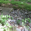 "Stormwater flows from the outfall over this rip-rap, which reduces the speed of the flow.<br /> <br /> The Montgomery County Department of Environmental Protection (DEP) received a $2 million TE grant in 2000 to construct channel restoration and habitat improvements in Rock Creek Park. In an effort to restore and protect the Rock Creek watershed, which ultimately drains to the Chesapeake Bay, this project added modern stormwater controls to 730 acres to the Turkey Branch Stream subwatershed (approx. 30% of the drainage area). The project including work along 12,000 feet of the Turkey Branch Stream, along 13,400 feet of the Sycamore Creek, and along Joseph's Branch Stream. The Rock Creek watershed drains approximately 60 square miles.<br /> <br /> You can learn more about the DEP's work in this watershed by visiting their website at: <a href=""http://www.montgomerycountymd.gov/deptmpl.asp?url=/content/dep/restoration/home.asp"">http://www.montgomerycountymd.gov/deptmpl.asp?url=/content/dep/restoration/home.asp</a>"