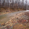 "Prior to restoration, conditions on Joseph's Branch included severely eroded stream banks and undercut trees.<br /> <br /> The Montgomery County Department of Environmental Protection (DEP) received a $2 million TE grant in 2000 to construct channel restoration and habitat improvements in Rock Creek Park. In an effort to restore and protect the Rock Creek watershed, which ultimately drains to the Chesapeake Bay, this project added modern stormwater controls to 730 acres to the Turkey Branch Stream subwatershed (approx. 30% of the drainage area). The project including work along 12,000 feet of the Turkey Branch Stream, along 13,400 feet of the Sycamore Creek, and along Joseph's Branch Stream. The Rock Creek watershed drains approximately 60 square miles.<br /> <br /> You can learn more about the DEP's work in this watershed by visiting their website at: <a href=""http://www.montgomerycountymd.gov/deptmpl.asp?url=/content/dep/restoration/home.asp"">http://www.montgomerycountymd.gov/deptmpl.asp?url=/content/dep/restoration/home.asp</a>"