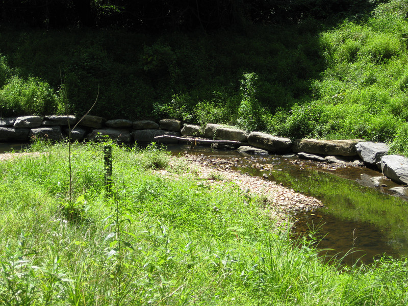 "Rocks packed along the stream bank reduce erosion and buttress new tree plantings until the tree roots can mature and stabilize the bank.<br /> <br /> The Montgomery County Department of Environmental Protection (DEP) received a $2 million TE grant in 2000 to construct channel restoration and habitat improvements in Rock Creek Park. In an effort to restore and protect the Rock Creek watershed, which ultimately drains to the Chesapeake Bay, this project added modern stormwater controls to 730 acres to the Turkey Branch Stream subwatershed (approx. 30% of the drainage area). The project including work along 12,000 feet of the Turkey Branch Stream, along 13,400 feet of the Sycamore Creek, and along Joseph's Branch Stream. The Rock Creek watershed drains approximately 60 square miles.<br /> <br /> You can learn more about the DEP's work in this watershed by visiting their website at: <a href=""http://www.montgomerycountymd.gov/deptmpl.asp?url=/content/dep/restoration/home.asp"">http://www.montgomerycountymd.gov/deptmpl.asp?url=/content/dep/restoration/home.asp</a>"