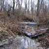 "Pre-construction conditions on Turkey Branch included exposed utilities.  These utilities are vulnerable to damage during floods and excessive weathering, as well as being unsightly.<br /> <br /> The Montgomery County Department of Environmental Protection (DEP) received a $2 million TE grant in 2000 to construct channel restoration and habitat improvements in Rock Creek Park. In an effort to restore and protect the Rock Creek watershed, which ultimately drains to the Chesapeake Bay, this project added modern stormwater controls to 730 acres to the Turkey Branch Stream subwatershed (approx. 30% of the drainage area). The project including work along 12,000 feet of the Turkey Branch Stream, along 13,400 feet of the Sycamore Creek, and along Joseph's Branch Stream. The Rock Creek watershed drains approximately 60 square miles.<br /> <br /> You can learn more about the DEP's work in this watershed by visiting their website at: <a href=""http://www.montgomerycountymd.gov/deptmpl.asp?url=/content/dep/restoration/home.asp"">http://www.montgomerycountymd.gov/deptmpl.asp?url=/content/dep/restoration/home.asp</a>"
