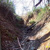 "A stormwater outfall from Turkey Branch Parkway into Turkey Branch prior to restoration.<br /> <br /> The Montgomery County Department of Environmental Protection (DEP) received a $2 million TE grant in 2000 to construct channel restoration and habitat improvements in Rock Creek Park. In an effort to restore and protect the Rock Creek watershed, which ultimately drains to the Chesapeake Bay, this project added modern stormwater controls to 730 acres to the Turkey Branch Stream subwatershed (approx. 30% of the drainage area). The project including work along 12,000 feet of the Turkey Branch Stream, along 13,400 feet of the Sycamore Creek, and along Joseph's Branch Stream. The Rock Creek watershed drains approximately 60 square miles.<br /> <br /> You can learn more about the DEP's work in this watershed by visiting their website at: <a href=""http://www.montgomerycountymd.gov/deptmpl.asp?url=/content/dep/restoration/home.asp"">http://www.montgomerycountymd.gov/deptmpl.asp?url=/content/dep/restoration/home.asp</a>"