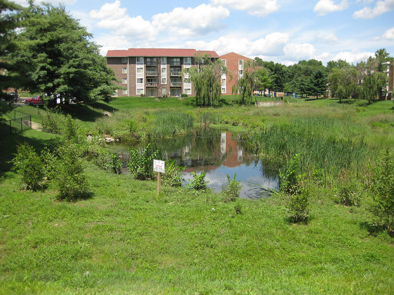"""The Montgomery County Department of Environmental Protection (DEP) received a $2 million TE grant in 2000 to construct channel restoration and habitat improvements in Rock Creek Park. In an effort to restore and protect the Rock Creek watershed, which ultimately drains to the Chesapeake Bay, this project added modern stormwater controls to 730 acres to the Turkey Branch Stream subwatershed (approx. 30% of the drainage area). The project including work along 12,000 feet of the Turkey Branch Stream, along 13,400 feet of the Sycamore Creek, and along Joseph's Branch Stream. The Rock Creek watershed drains approximately 60 square miles.<br /> <br /> You can learn more about the DEP's work in this watershed by visiting their website at: <a href=""""http://www.montgomerycountymd.gov/deptmpl.asp?url=/content/dep/restoration/home.asp"""">http://www.montgomerycountymd.gov/deptmpl.asp?url=/content/dep/restoration/home.asp</a>"""