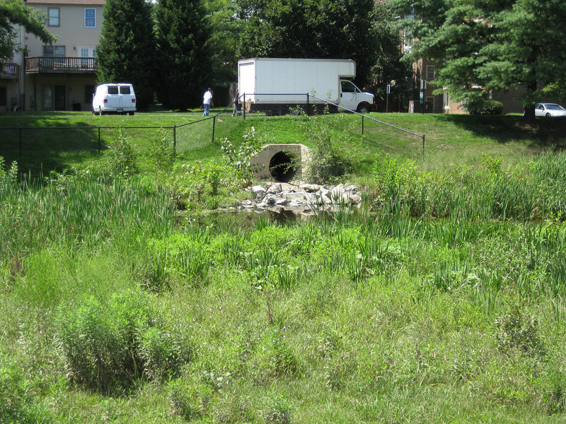 "Peppertree Pond provides stormwater control for 189 acres of urbanized land.<br /> <br /> The Montgomery County Department of Environmental Protection received a $2 million TE grant in 2000 to construct channel restoration and habitat improvements in Rock Creek Park. In an effort to restore and protect the Rock Creek watershed, which ultimately drains to the Chesapeake Bay, this project added modern stormwater controls to 730 acres to the Turkey Branch Stream subwatershed (approx. 30% of the drainage area). The project including work along 12,000 feet of the Turkey Branch Stream, along 13,400 feet of the Sycamore Creek, and along Joseph's Branch Stream. The Rock Creek watershed drains approximately 60 square miles.<br /> <br /> You can learn more about the DEP's work in this watershed by visiting their website at: <a href=""http://www.montgomerycountymd.gov/deptmpl.asp?url=/content/dep/restoration/home.asp"">http://www.montgomerycountymd.gov/deptmpl.asp?url=/content/dep/restoration/home.asp</a>"