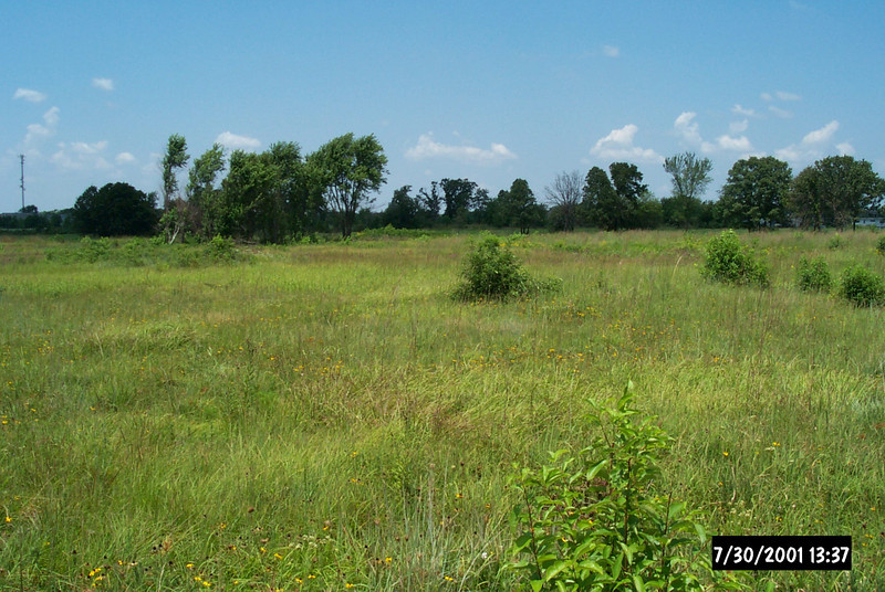In the early 1990s, the community of Rogers, Arkansas, faced the dilemma of preserving natural resources while accommodating development. The expansion of two existing highways and commercial and residential development created silt and chemical runoff that threatened to destroy nearby Searles Prairie. This ten acre tall grass prairie located adjacent to Highway 62 was one of the last remaining vestiges of northwest Arkansas' native geography. Since the Rogers community considers Searles Prairie an important resource and educational tool for local schoolchildren, the potential for damage alarmed many people. In response, the Arkansas Natural Heritage Commission approached the Arkansas State Highway Agency about expanding the runoff mitigation required of roadway construction projects. Using a Transportation Enhancements award of $671,426, highway engineers constructed a catch basin and laid underground pipes in the adjacent lands to divert excessive water and highway runoff away from the prairie.
