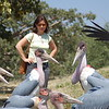 Birds are not shy at all in Ethiopia, they live side by side with people!