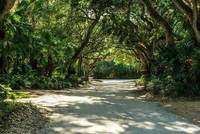 Ladybug Lane Canopy and Riomar Beach-37