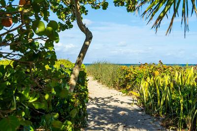 Ladybug Lane Canopy and Riomar Beach-29