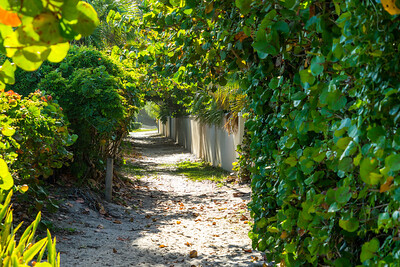 Ladybug Lane Canopy and Riomar Beach-27