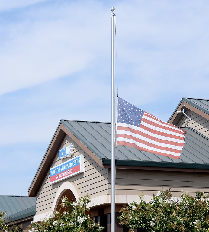 . The Valley Oak Veterinary Center flies the flag at half staff in honor of those lost on Sept. 11, 2001 in Chico, Calif. Monday Sept. 11, 2017. (Bill Husa -- Enterprise-Record)