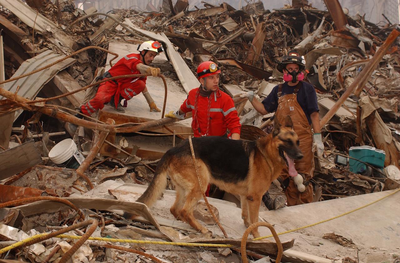 World Trade Center, New York 9-23-2001. French Urban Search and Rescue team.<br /> Andrea Booher/FEMA News Photo