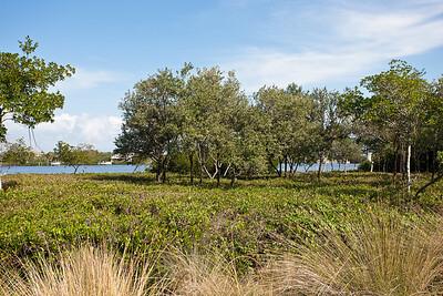 9320 Marsh Island Drive -1_