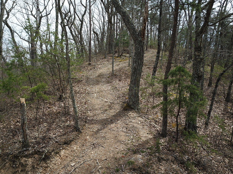 Additional ATV trails all over the place