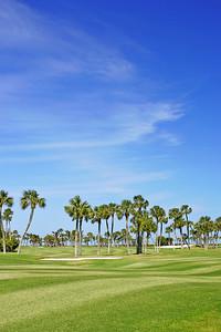 Golf Course Vertical