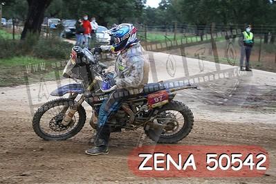 ZENA 50542