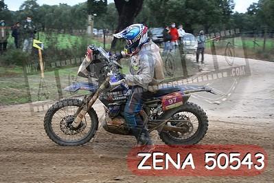 ZENA 50543