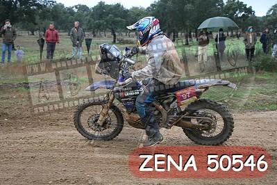 ZENA 50546