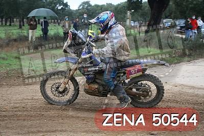 ZENA 50544