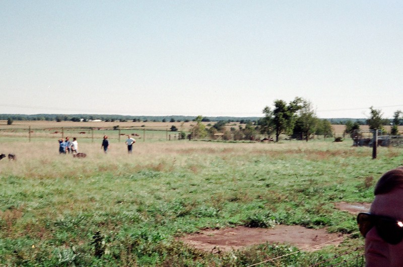 09-92 Battle Ground IN 01 Wolf Park