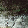 09-92 Clifton Gorge John Bryan 31