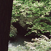 09-92 Clifton Gorge John Bryan 13