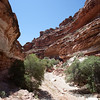 061_AriZona2011_YN8W0320