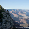203_AriZona2011_YN8W1003