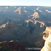 216_AriZona2011_YN8W1064