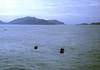 Fishing Boats in Quin Nhon Harbor