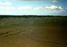 Cinder Field