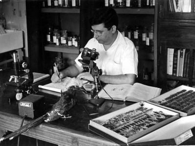 Lab. de Biologia do Dundo - Luna de Carvalho