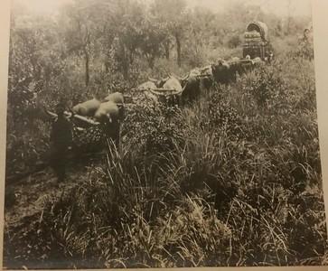1928 - Transporte de abastecimentos para o Dundo