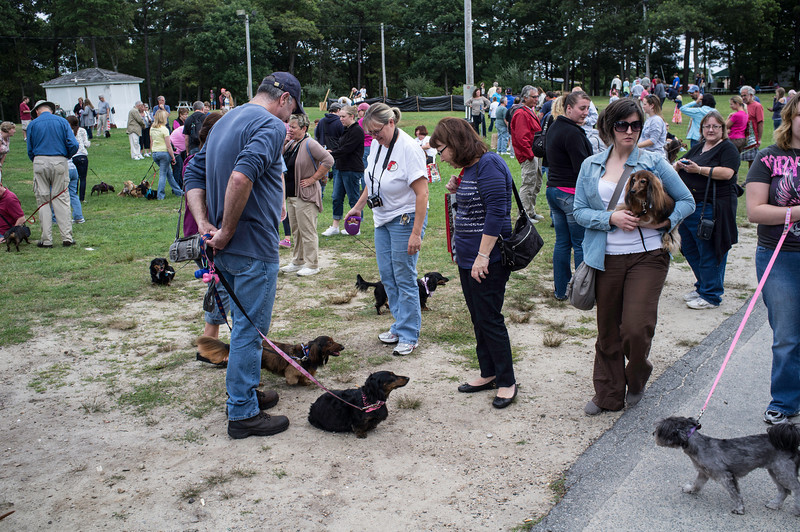 092212_Cape_Cod_Doxie_Day0175