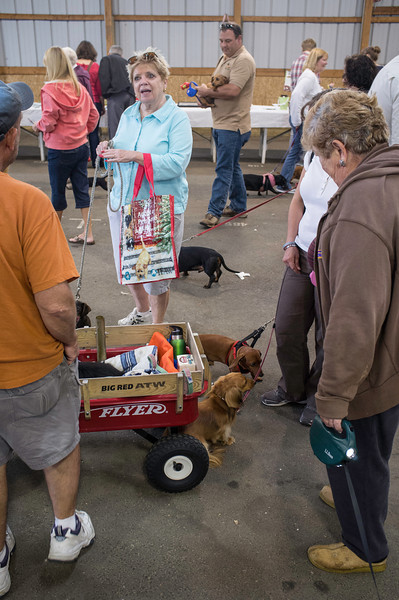 092212_Cape_Cod_Doxie_Day0172