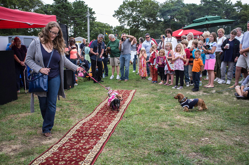 092212_Cape_Cod_Doxie_Day0194