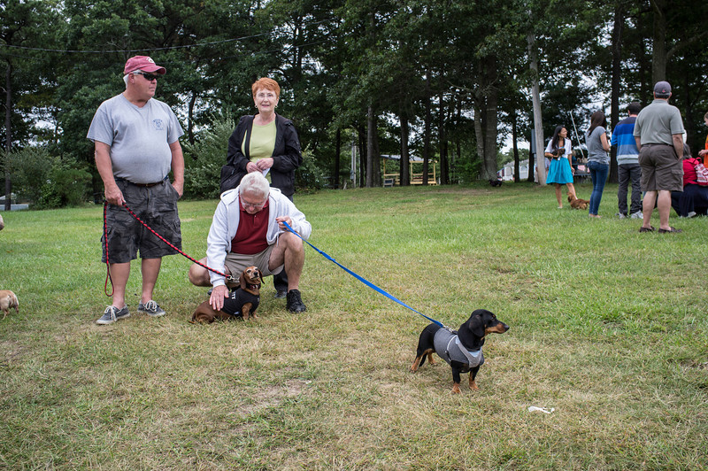 092212_Cape_Cod_Doxie_Day0183