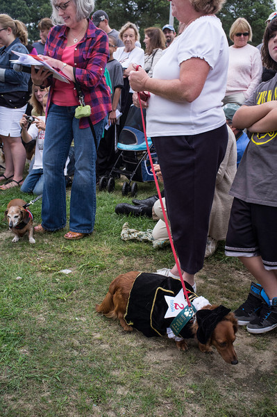 092212_Cape_Cod_Doxie_Day0187