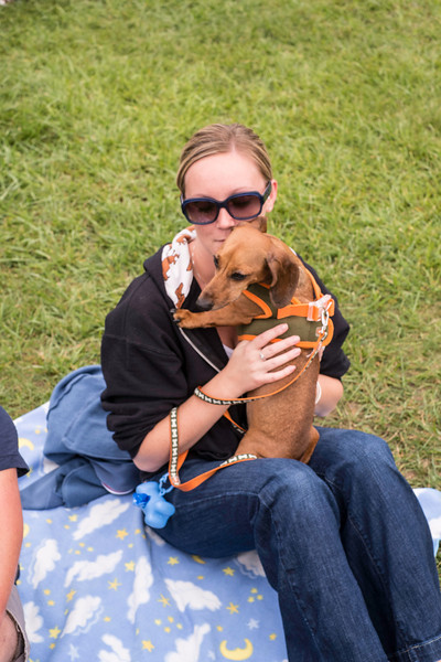 092212_Cape_Cod_Doxie_Day0033