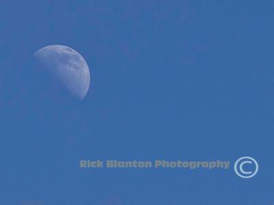 """ Blue Moon """