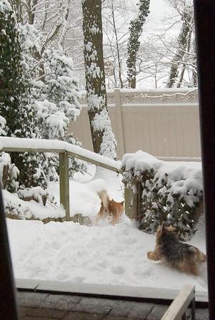 Fun in the Snow - 2008-02-22