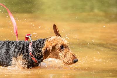 Sophie's First Swim