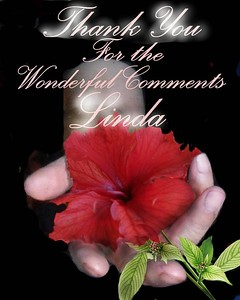 E-card to Linda - Social Networking
