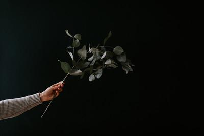 A Floral Thing - Jamie Mercurio Photo-2