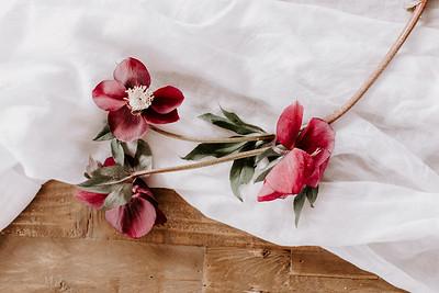 A Floral Thing - Jamie Mercurio Photo-32