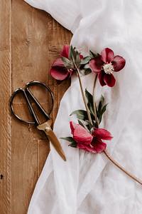 A Floral Thing - Jamie Mercurio Photo-33