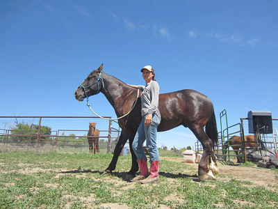 Trainer Dana Lovell and her mustang challenge entrant, Atticus